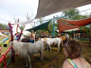 die Ponybande macht Pause